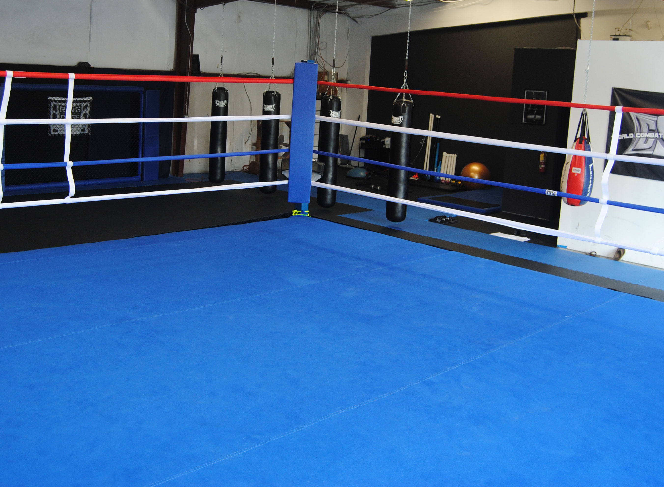 Inside Boxing Ring Download